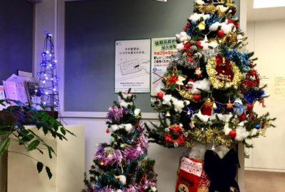 クリスマスツリーが登場しました!!