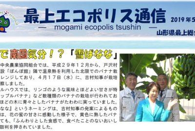 最上エコポリス通信(令和元年5月号)が発行されました