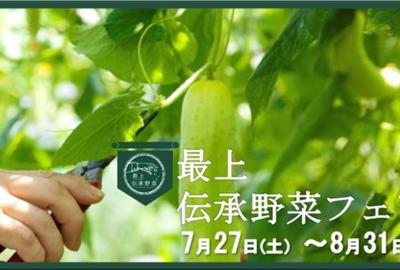 「2019 Summer 最上伝承野菜フェア」が開催されております