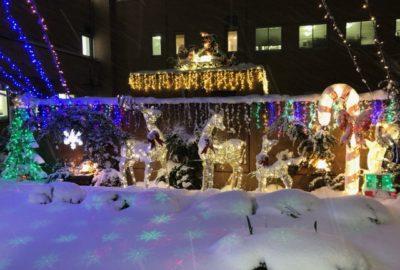 中庭のイルミネーションが点灯しました