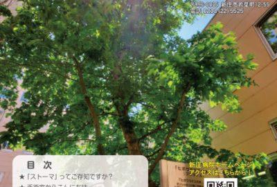 広報誌「わかば」令和3年8月号を発行しました